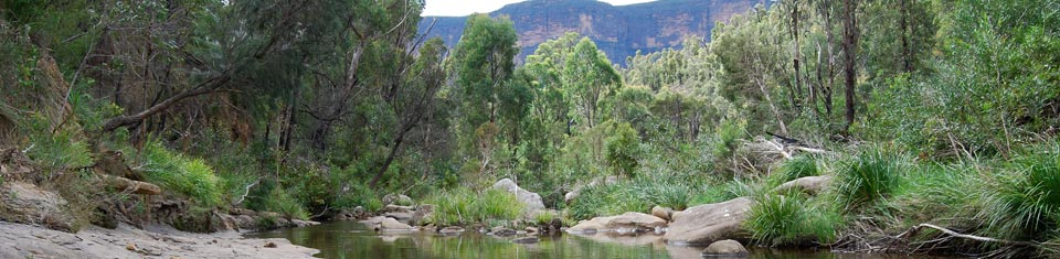 Blue Mountains World Heritage Region Tours