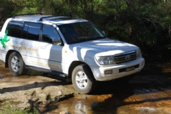 Rocks to Rainforest 4WD Eco Tour